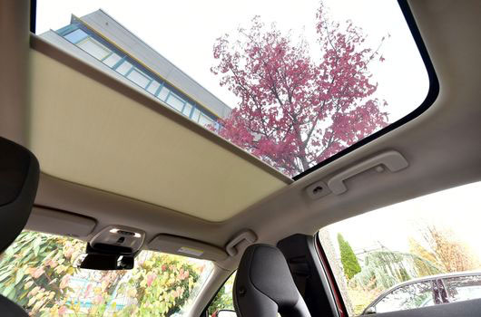 Panoramic Roof Systems